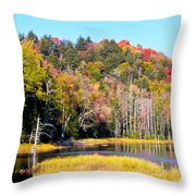 Adirondack Color V Throw Pillow