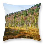 Adirondack Color Vi Throw Pillow