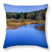 Adirondack Color Vii Throw Pillow