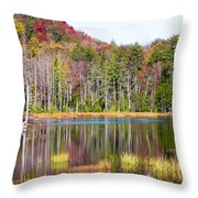 Adirondack Color Viii Throw Pillow