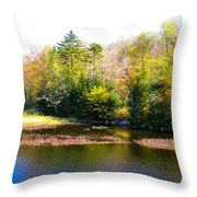 Adirondack Color X Throw Pillow