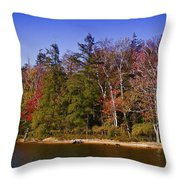 Adirondack Color Xi Throw Pillow