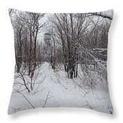 Adirondack Fire Tower 1 Of 6 Throw Pillow