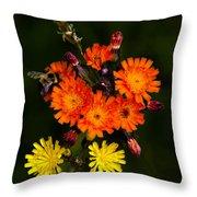 Adirondack Flowers Throw Pillow