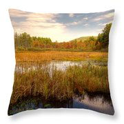 Adirondack Pond Throw Pillow