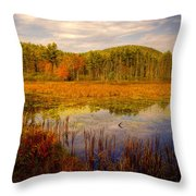 Adirondack Pond II Throw Pillow