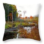Adirondack Pond Iv Throw Pillow