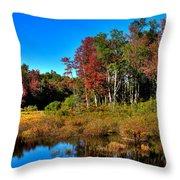 Adirondack Stream In Autumn Throw Pillow