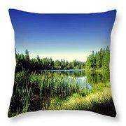 Admiring The Beauty At Woodbridge Lake Throw Pillow