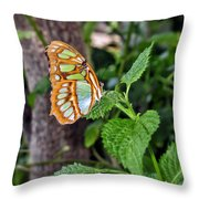 Admiring The Garden Throw Pillow
