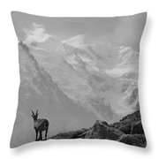 Admiring The View Throw Pillow by Camilla Brattemark