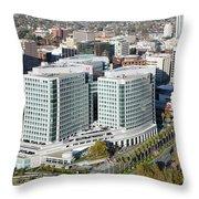 Adobe Systems Building San Jose California Throw Pillow