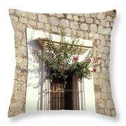 Adobe Window Copper Canyon Mexico Throw Pillow