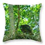 Adolescent Eagle Eating A Fish Throw Pillow