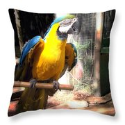 Adopted Macaw - Rescued Parrot Throw Pillow