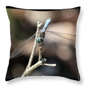 Adorable Dragonfly With Border Throw Pillow