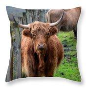 Adorable Highland Cow Throw Pillow