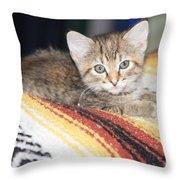Adorable Kitten Throw Pillow