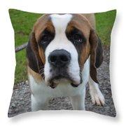 Adorable Saint Bernard Dog Throw Pillow