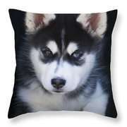 Adorable Siberian Husky Sled Dog Puppy Throw Pillow