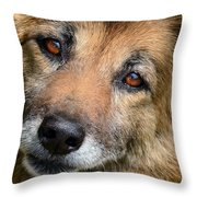 Adore Throw Pillow by Camille Lopez
