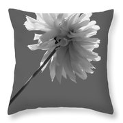 Adored In Bw Throw Pillow