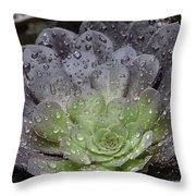 Adorned By Raindrops Throw Pillow