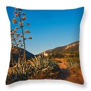 Adriatic Landscape Throw Pillow