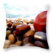 Adriatico Preistorico 2 Throw Pillow