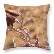 Adult Eagle With Eaglet  Throw Pillow