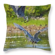Aerial Attack Throw Pillow