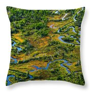 Aerial Of A Wetland, Over Northern Throw Pillow