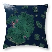 Aerial Of Small Island Village, Uganda Throw Pillow