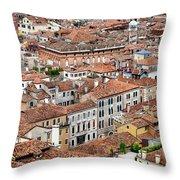 Aerial Of Venice Throw Pillow