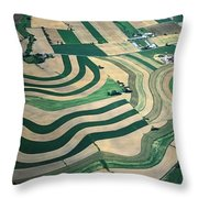 Aerial Tapestry Throw Pillow by Blair Seitz