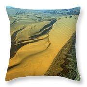 Aerial View Of Skelton Coast, Namib Throw Pillow