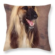 Afghan Hound Dog, Portrait Throw Pillow