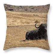 African Buffalo V2 Throw Pillow