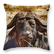 African Buffalo V3 Throw Pillow