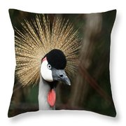 African Crowned Crane 1 Throw Pillow
