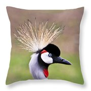 African Crowned Crane Portrait Throw Pillow