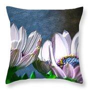 African Daisy Detail Throw Pillow