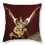 African Devil Mantis Throw Pillow
