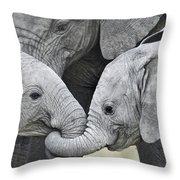 African Elephant Calves Loxodonta Throw Pillow