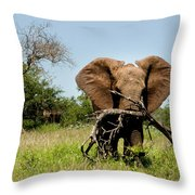 African Elephant Carying A Tree With Its Trunk Throw Pillow