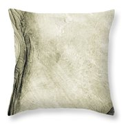 African Elephant Detail With Eye Throw Pillow