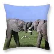 African Elephant Greeting Endangered Species Tanzania Throw Pillow