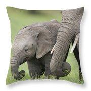 African Elephant Juvenile And Calf Kenya Throw Pillow