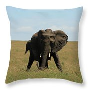 African Elephant Masai Mara Kenya Throw Pillow