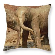 African Elephant Orphans Playing In Mud Throw Pillow